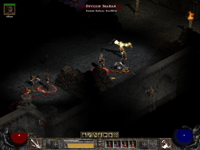 Diablo 2 Attacked by a Shaman